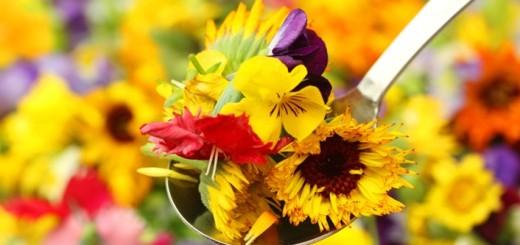 Cveće na meniju